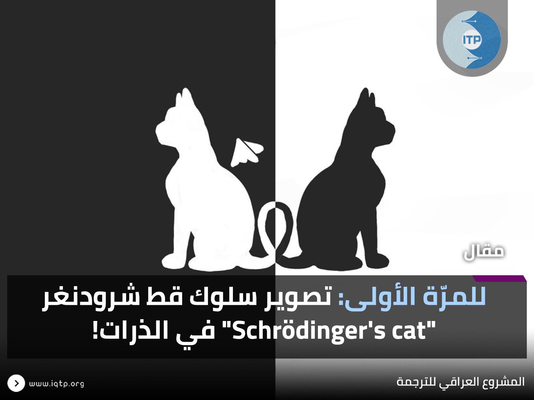 """للمرّة الأولى؛ تصوير سلوك قط شرودنغر """"Schrödinger's cat"""" في الذرات!"""