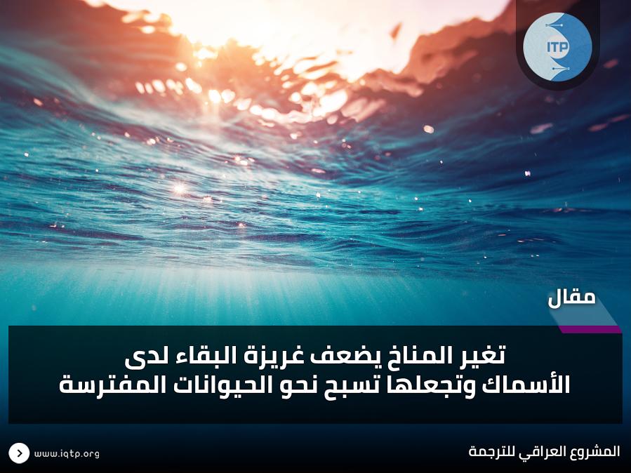 تغير المناخ يضعف غريزة البقاء لدى الأسماك وتجعلها تسبح نحو الحيوانات المفترسة