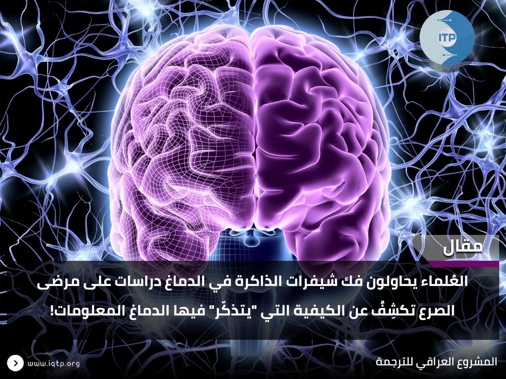 """العُلماء يحاولون فك شيفرات الذاكرة في الدماغ دراسات على مرضى الصرع تكشِفُ عن الكيفية التي """"يتذكّر"""" فيها الدماغ المعلومات!"""