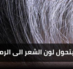 لماذا يتحول لون الشعر الى الرمادي ؟