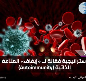 استراتيجية فعّالة لــ «إيقاف» المناعة الذاتية (Autoimmunity)